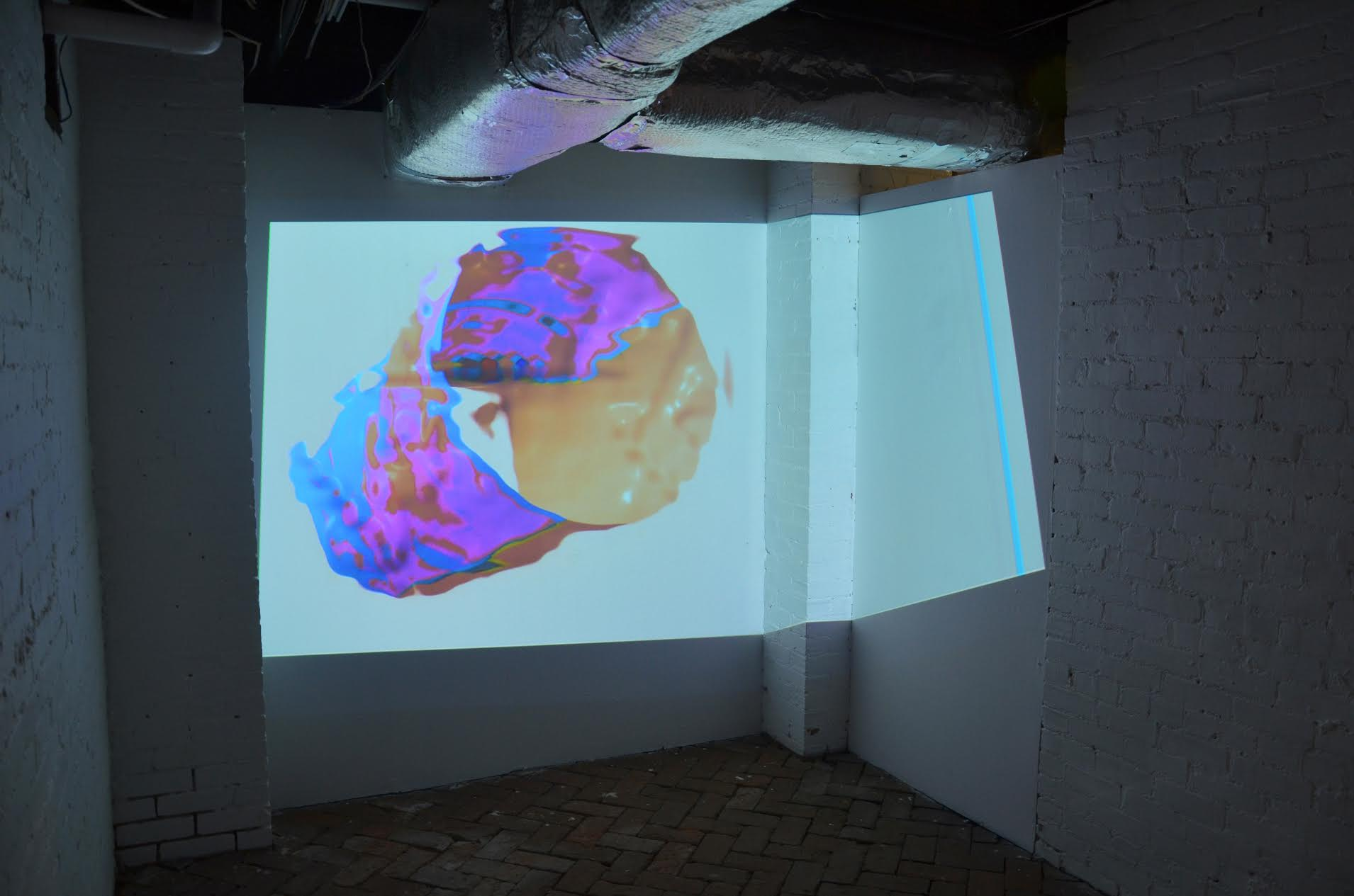 Bojana Ginn: Virtual T transplant, video projection in whitespec at whitespace gallery.