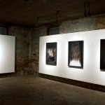 Eyes Open Slowly by Constance Thalken