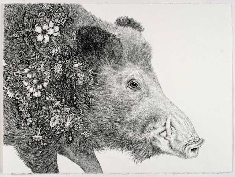 Laura Bell, Root (Boar), pen and ink on paper, 37½ by 30½ inches.