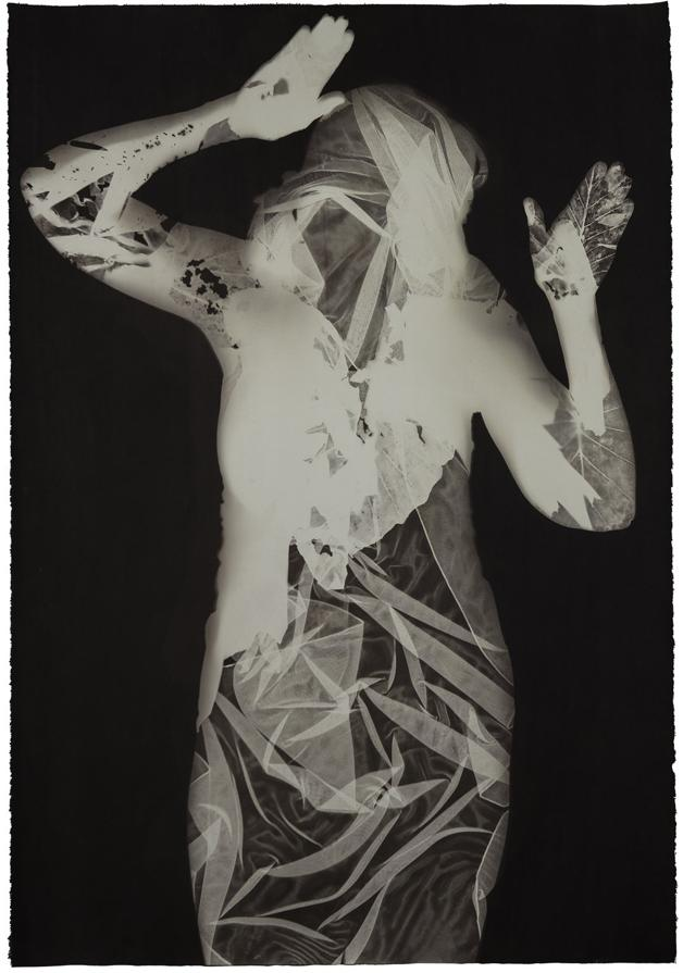 Image of Alcyone by V. Elizabeth Turk